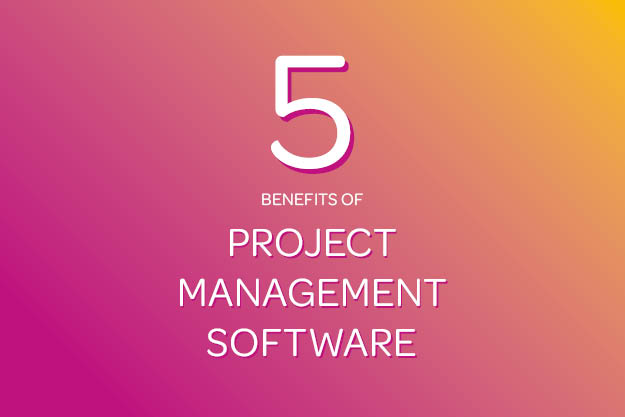 Benefits of Bespoke Project Management Software